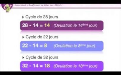 comment calculer son cycle